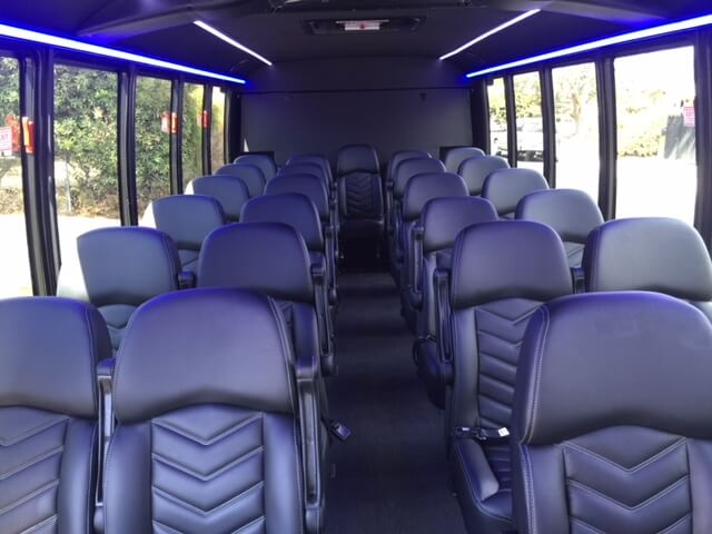 28 pax lux mini coach int