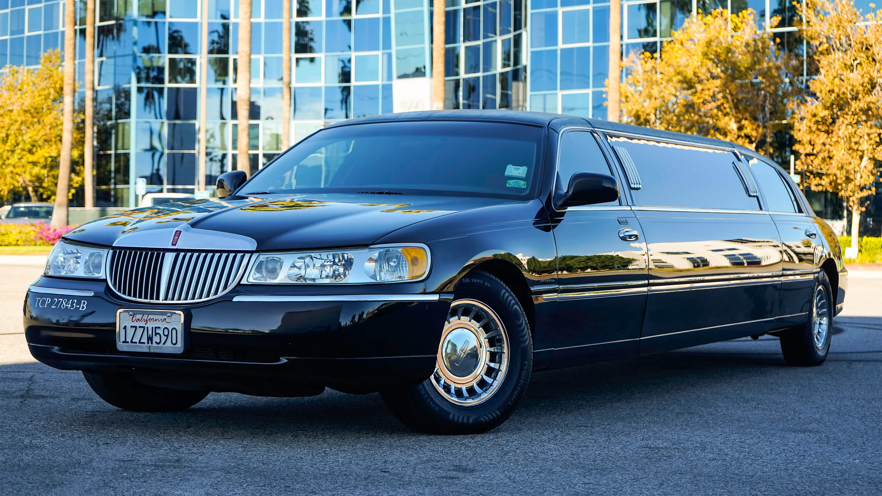 6 TO 8 PAX LIMO EXT