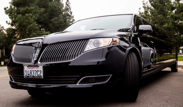 12 pax mkt limo grill
