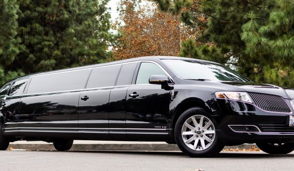 12 pax mktlimo sideprofile best